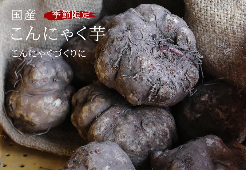 季節限定 国産こんにゃく芋 新物入荷いたしました。