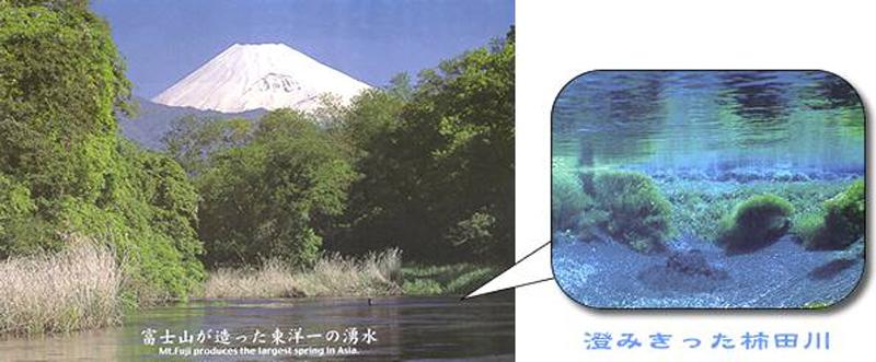 富士山と柿田川名水